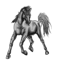 Free Trotting horse Greyscale by naomih91