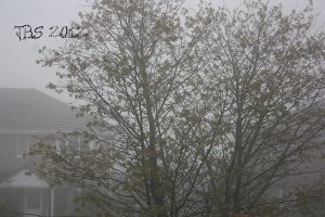 weather 23102012 01 by Isilian2005