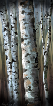 birch and chickadees by eniad