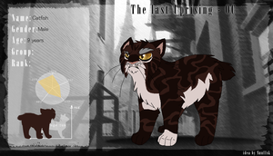 :TLU Character Application: Catfish by scarletsp33dster