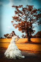 Bridal Gown Photoshoot 6 by Shooter1970