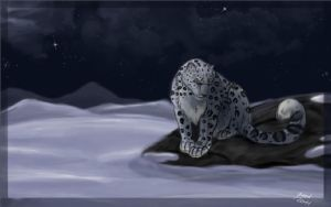 Snow Leopard by Aluxien