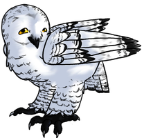 Snowy Owl for Cheese by lupus-volaticus