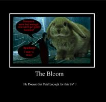 The Bloom Meme by SabreShot