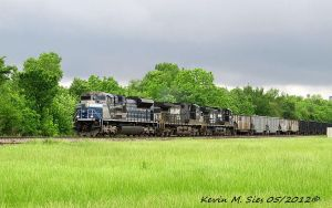 EMDX 2012 NS 9258 and NS OLS 9252 lead NS 403 by EternalFlame1891