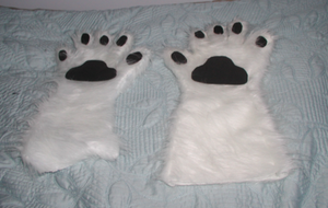 Border Collie Paws I by RoseHexwit