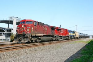 CP 9558 on K-048 by cr6660