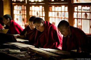monks reading in Library in Tibet by demi2004