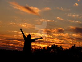 Rejoicing the Sunset by allieactress101
