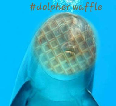 DOLPHIN WAFFLE V2 FOR ARGO by my-little-pop-artist