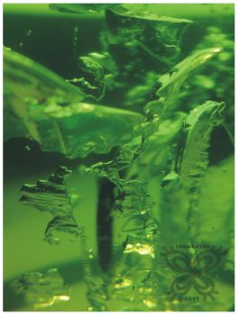 Green Abstract 10 by LenaRaven