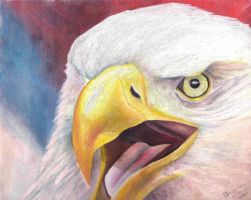 Angry Eagle by Artman225