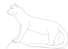 Fossa lineart by Katy500