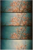 SUPERSAMPLER - Flowers I by Limouni