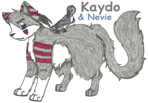 Kaydo by awcomicart
