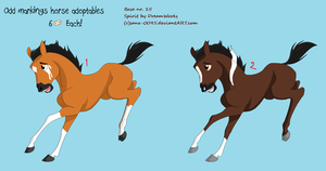 Horse Adoptables by BlackWolf1112-ADOPTS