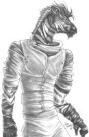 Zebra Anthro by ronron-san