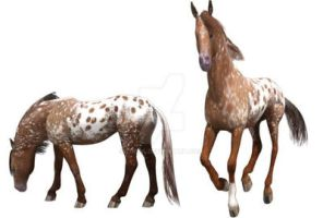 Paint and foal by lubca