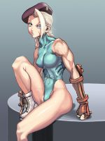 Street Fighter Cammy by HayakawaSonchou