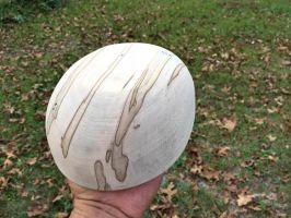 Ambrosia Maple Bowl Sanded_Bottom by lamorth-the-seeker