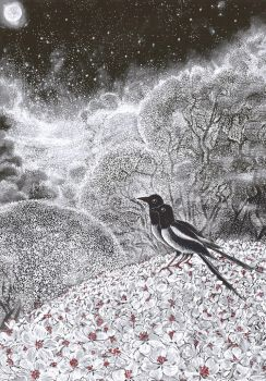 magpies in the springtime trees by barbarasobczynska