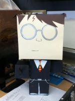 Box Harry Potter by Mica08
