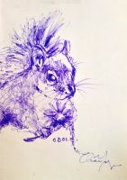 Purple Squirrel by MagicFlyingBunnies