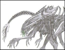 predalien queen by jackalsmoon
