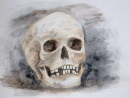 Watercolor Skull by ConnyDuck