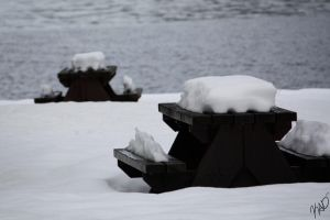 Waiting for Summer by KDesJardins
