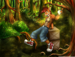 Crash Bandicoot by DarknessDragona