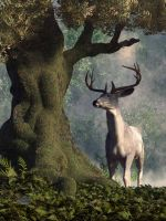 The White Stag by deskridge