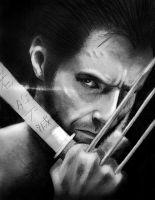 The Wolverine by PolishPsycho