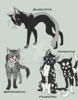 Warrior Cats Group 3 by KasaraWolf