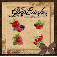 GIMP Brushes | Strawberry Brushes by TheAngeldove