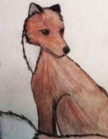 Fox by kate131