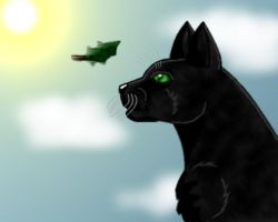 Hollyleaf by Swiper3
