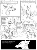Behind the woods P28 by Savu0211