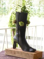 Garden in a Boot by sparkycom