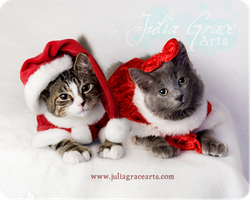 Christmas Cuties by JuliaGraceArts