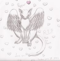R.I.P Pepper by PeaceArt79