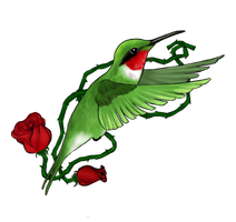 Hummingbird by kremia
