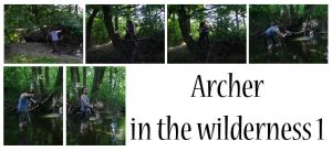 Archer in the wilderness by syccas-stock