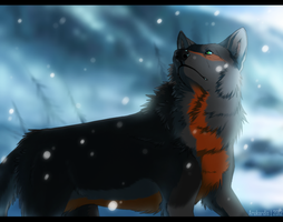 ''The winter left her blanket here... by Arukardis
