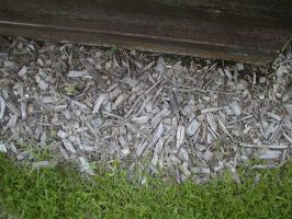wood chips by Exor-stock