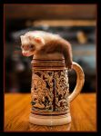 Stein-Sized by HeezDedJim