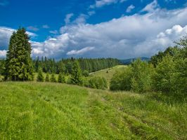 Beskidy Mountains 3 by fiamen