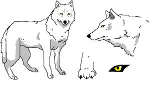 New wolf style by NekoHime07