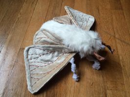 Venezuelan Poodle Moth Soft Sculpture by mollyburgess