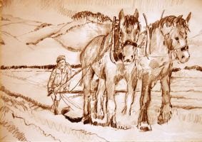 We plough the fields and Scatter...3 by mr-macd